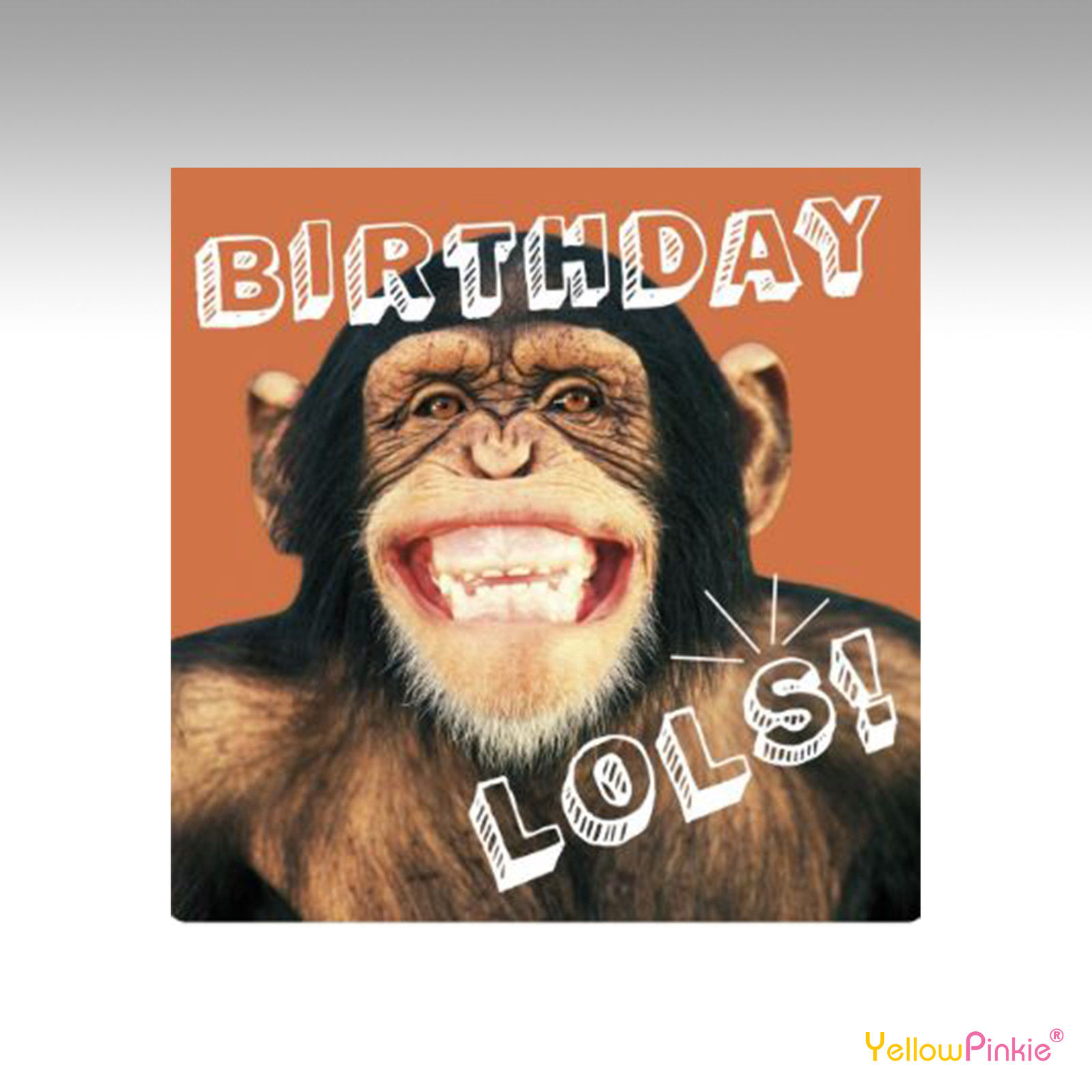 Funny Crazy Animal Antics Lol Birthday Cards Greeting Cards Ebay